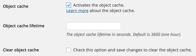 Object cache options